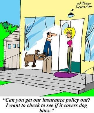 home insurance and dog bites