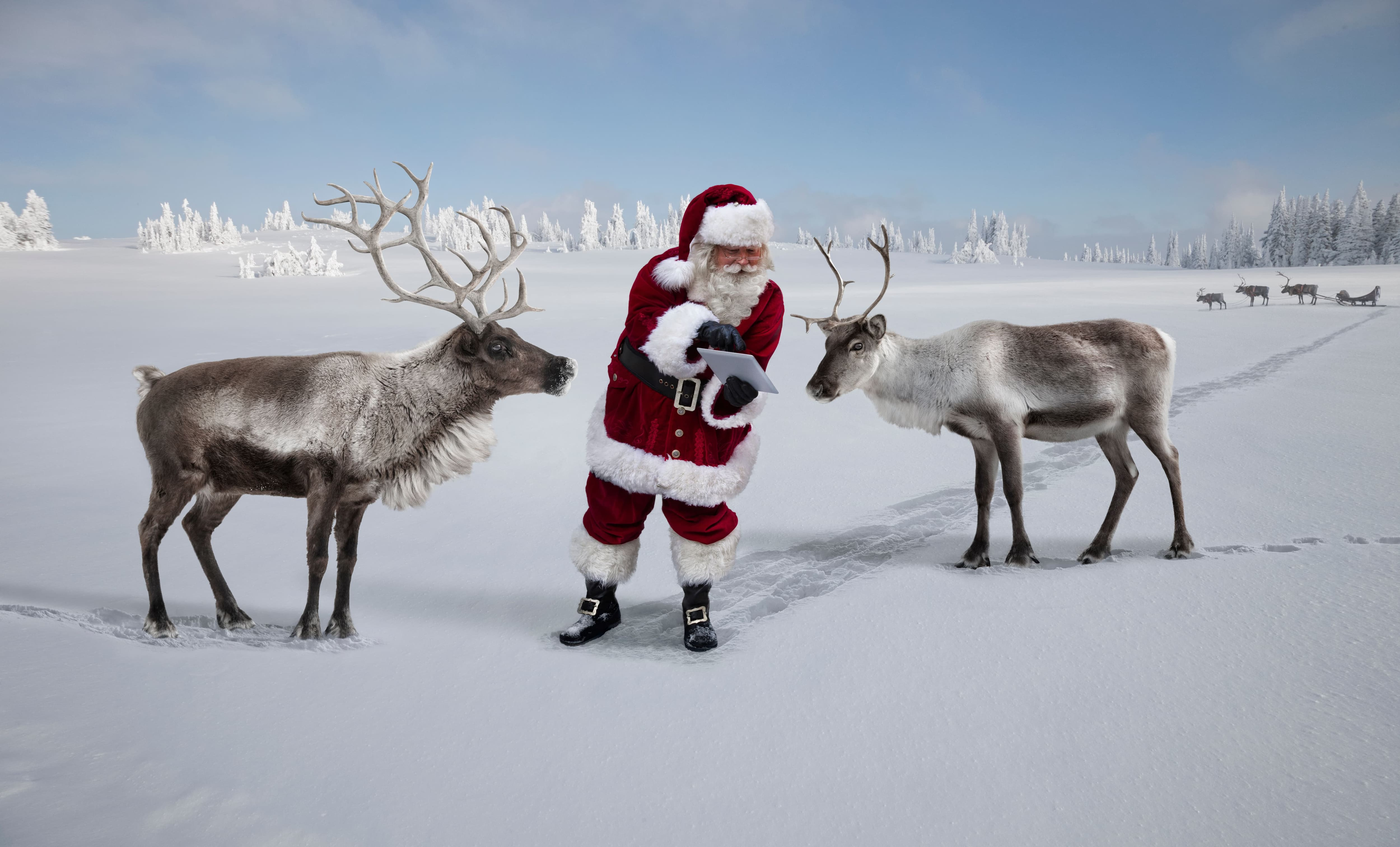 Santa and reindeer at the north pole reviewing their flight plan on a tablet.